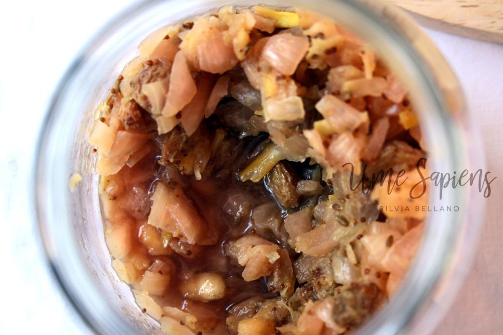 chutney di cipolle fermentate