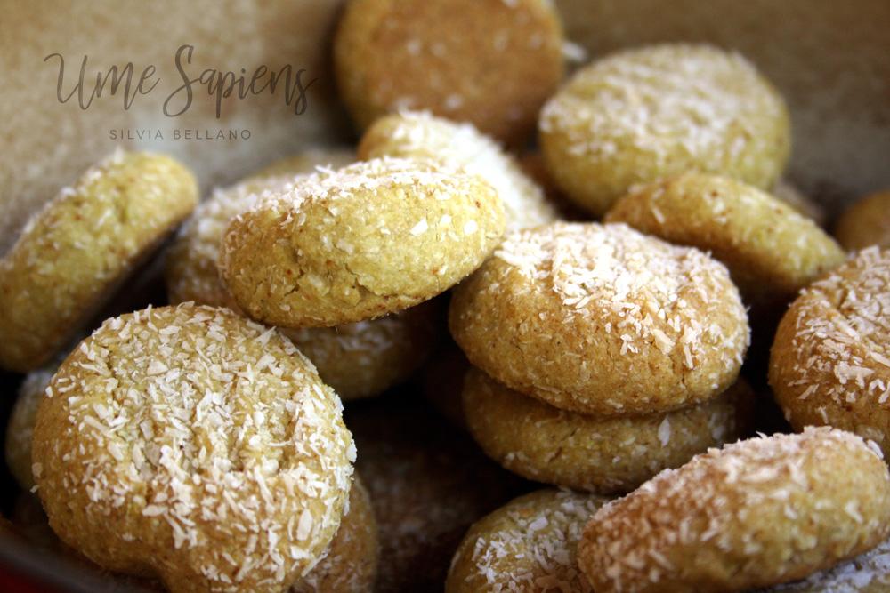 biscotti vegan senza glutine