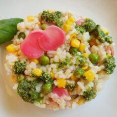 Insalata di riso integrale con verdure fermentate e pesto leggero