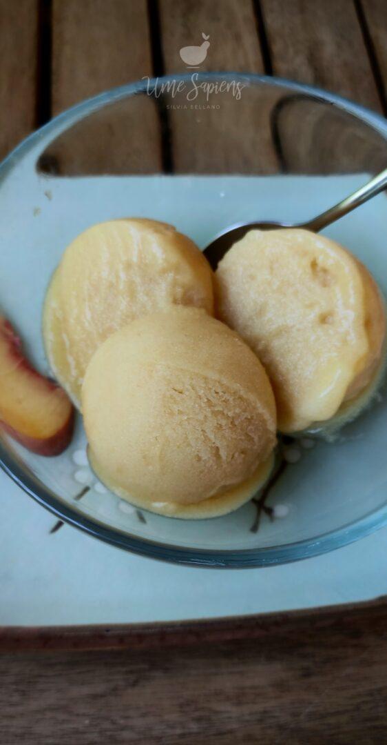 gelato vegan senza zucchero